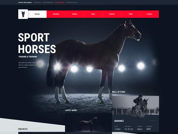 בדוגמה פרויקט שעוצב על ידי הסטודיו, אתר תדמיתי לתחום הסחר בסוסי מרוץ, Tal Milstein's Stables Sport Website